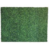 GRASS (10x8)