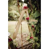 ISABEL ladder