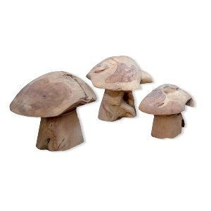 Wood 'Shrooms