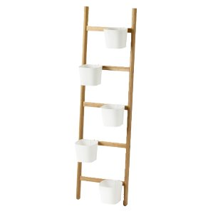 Ladder Plant Holder
