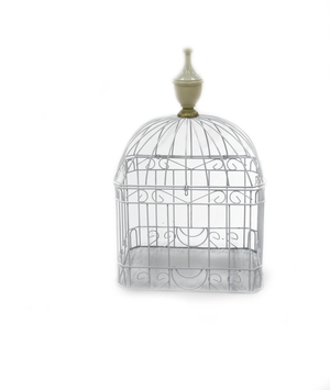 Wire Card Cage