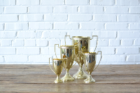 Brass Trophies