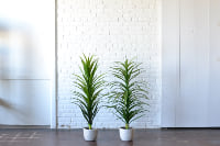 Pair of Faux Potted Plants with Planters