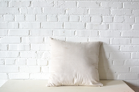 Pillow - Neutral Velvet Square