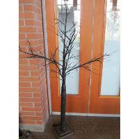 Black Trees with Mini Lights