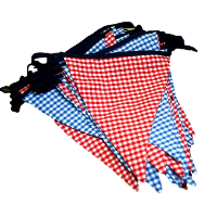 Blue and Red Gingham Banners
