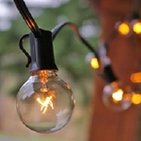 Globe Bulb Light Strings - 50' Long