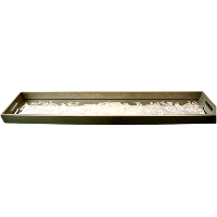 Long Mirrored Tray