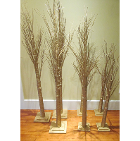 Gold Papery Stick Trees