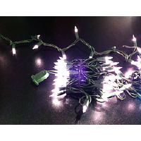 Outdoor Mini White Lights with Green Cord – 20'