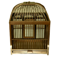 Gold Cage