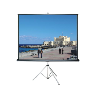 Tripod Movie Screen