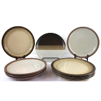 Earth Tone Stoneware Dinner Plates