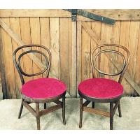 Fuscia Velvet Bentwood Chairs