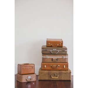 Earth Tone Luggage Collection