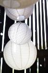CHINESE LANTERN WHITE 14