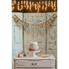 ROSE - CRACKLE VINT DOOR TRIO (HINGED)