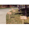 SET OF 6 VOWS - WOOD STAKED SIGNS