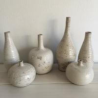 Ceramicist vase collection