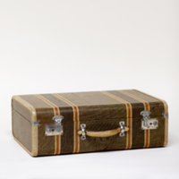 Sabi striped suitcase