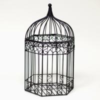 black birdcage