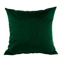 green velvet pillow (c)