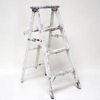 Derek white ladder
