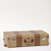 Air Master striped suitcase