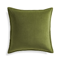 green velvet pillow (a)