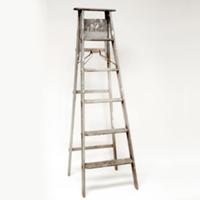 Janet ladder