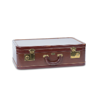Aniline leather suitcase