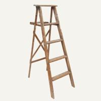 Jonathan ladder