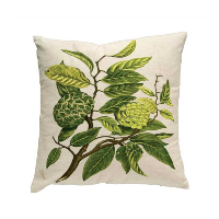 botanist throw pillow