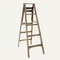 Berkeley ladder