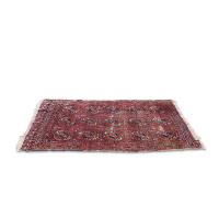 Kaveh 3x4' rug