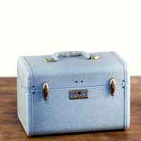 Ellison blue tweed train case