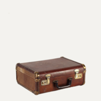 Cornell brown suitcase