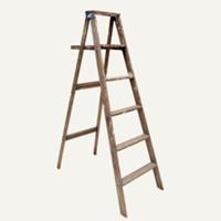 Chase ladder