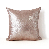 blush sequin pillow