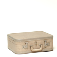 Elise beige suitcase