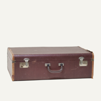 Newton burgundy suitcase