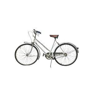 The Ryder: Vintage Bike