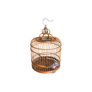 The Michelle: Bird Cage