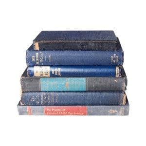 The Cornflowers: Blue Vintage Books