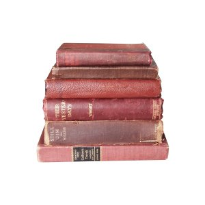 The Russets: Maroon/Brown Vintage Books