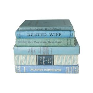 The Aster: Light Blue Vintage Books