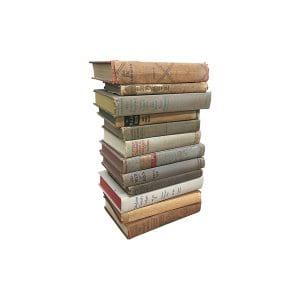 The Stones: Neutral Vintage Books