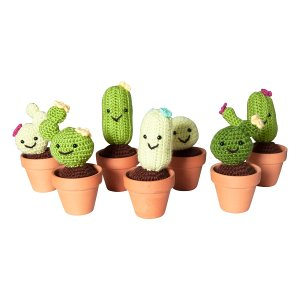 The Sonoran: Assorted Crochet Cacti