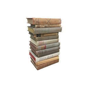 The Stones: Neutral Vintage Books