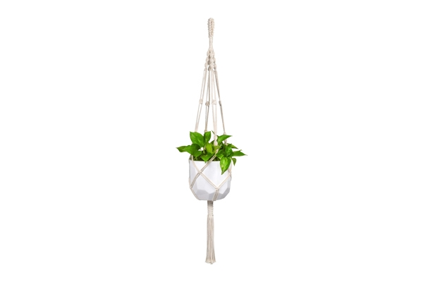 The Noa: Assorted Macrame Plant Hanger
